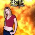 Buffy The Vampire Slayer  Tv Show Poster Style H 13x19