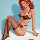Pin Up Girl  Style Y Poster 13x19 inches