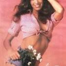 Catherine Bach Poster 13x19 inches D