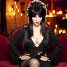 Elvira Tv Show Poster Style B 13x19 inch