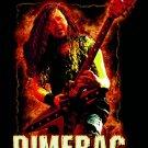 Dimebag Darrell Version C Poster  13x19 inches