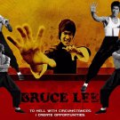 Bruce Lee   Movie Poster Style D 13x19