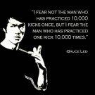Bruce Lee   Poster Style D 13x19