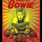 David Bowie  Poster 13x19 inches