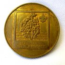 1973 National Boy Scout Jamboree Medal Token Coin USA