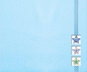 Creative Imaginations 8x8 Post Bound Scrapbook Photo Album BLUE STAR