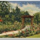 ST. PETERSBURGH, FLORIDA/FL POSTCARD, Roses/Sunken Garden