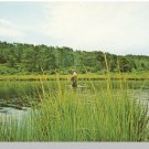 Nice CAPE COD, MASS/MA POSTCARD, Fisherman In Water