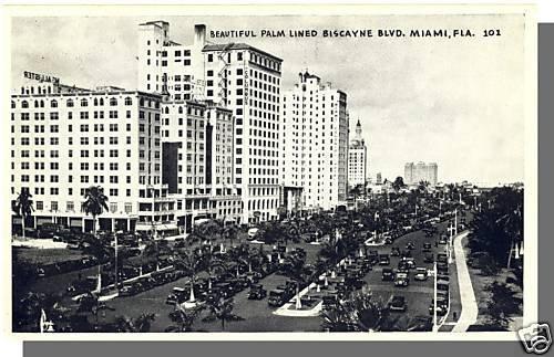 MIAMI, FLORIDA/FL POSTCARD, Biscayne Blvd/Palm Trees
