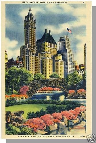 Striking NEW YORK/NY POSTCARD, Plaza In Central Park