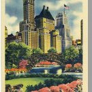 Striking NEW YORK/NY POSTCARD, Plaza In Central Park