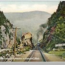 NEW HAMPSHIRE/NH POSTCARD, Crawford Notch/White Mounts