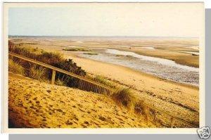 Beautiful CAPE COD, MASS/MA POSTCARD, Beach/Sea Grass