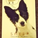 Sheep by Valerie Hobbs a Border Collie story