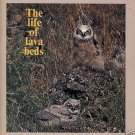 THE LIFE OF LAVA BEDS 1975 Wildlife Perry Schlegel