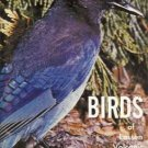 BIRDS OF LASSEN VOLCANIC NATIONAL PARK Robert C. Milne