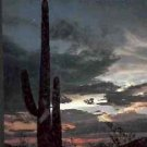 CACTUS COUNTRY THE AMERICAN WILDERNESS TIME LIFE BOOK