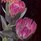 PROTEAS IN HAWAII BY ANGELA KAY KEPLER