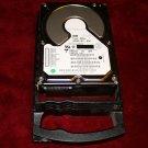 10 ea. IBM DRHL 36 gb. 7200 RPM Raid Hard Drives w/carrier