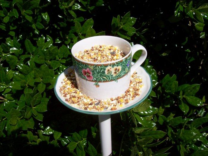 Teacup Bird Feeder or small planter