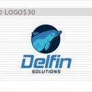 Delfin Solution