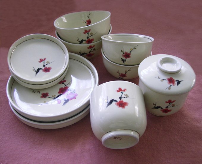 Japanese Dishes Set Plates, Bowls, Cups 11 pieces
