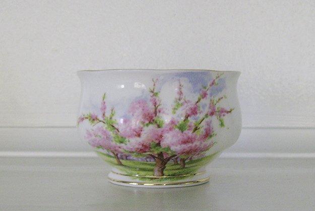 Royal Albert, Bone China, Blossom Time, Mini Open Sugar Bowl