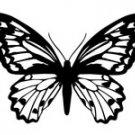 butrfly017
