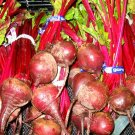 50+ RUBY QUEEN BEET seeds - sweet red beets