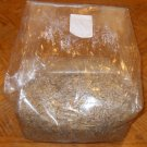 10 Mycobags Mycology Spawnbags Mushroom grow bags LARGE