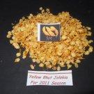 """20 seeds """"YELLOW"""" BHUT JOLOKIA -Ghost Chili Naga Pepper HOT!!"""