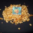 RARE YELLOW TRINIDAD 7-POT SEEDS-hot chili chilli 7 pod pepper