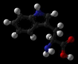 10 grams 99.4% Pure L-TRYPTOPHAN Powder - Sleep aid, Mood