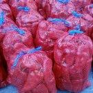 500 RED MARCONI SEEDS- Italian Sweet Pepper - Heirloom
