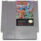 Wizards & Warriors Nintendo NES Adventure Family Game
