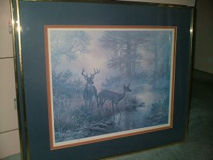 White Tail Lithograph (Grant Mac Donald)  Limited Edition