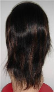 "10"" Silky Straight Full Lace Wig Indian remy"