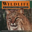Wildlife of Atlantic Canada & New England by Gary Saunders and Wayne Barrett
