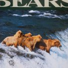 Bears By: Daniel Wood (Hardcover)