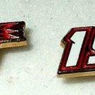 EARRINGS POST STUD #19 ELLIOTT SADLER NASCAR AUTORACING