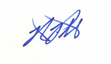 Robert Patrick signed 3x5