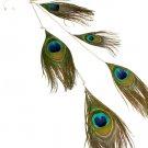 Green Earring Linear Drop Ear Wrap Crystal Stud Hook Pin Dual Function Feather 16 In 25185-9051SOGRN