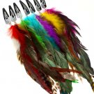 Multi Colored Hair Accessories Hair Pin Feather Dozen Package Assorted Colors 10 Inch 21728-99002MLT