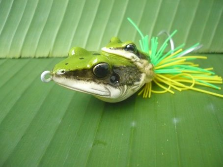 Handmade : Double Frog TopWater Fishing Lure #D-1