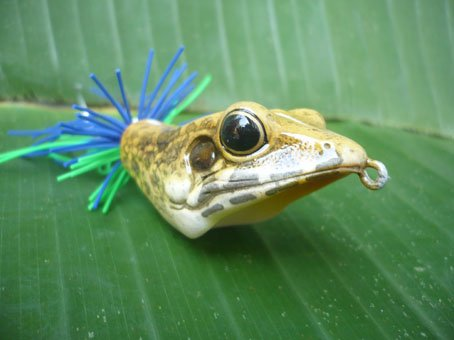 Handmade : V Frog TopWater Fishing Lure #3