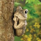 Peek-a-boo Frog Tree Decor