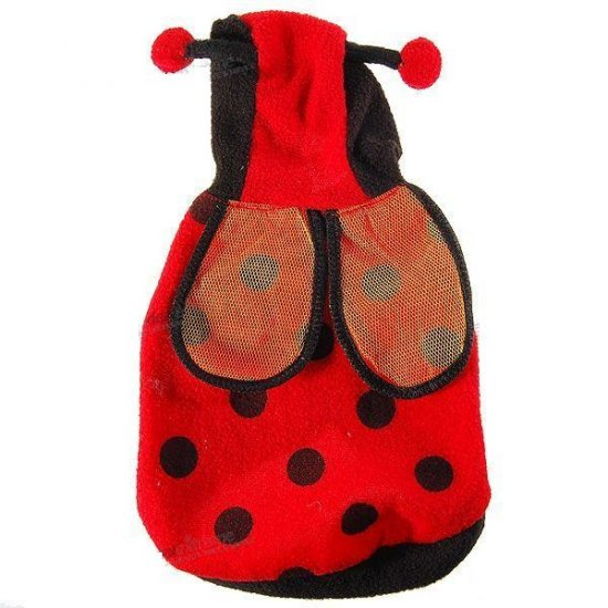 Cute Beetle Cotton-Padded Winter Clothing with Cap for Dogs/Cats (Size-12)