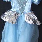 Cinderella Costume Dress