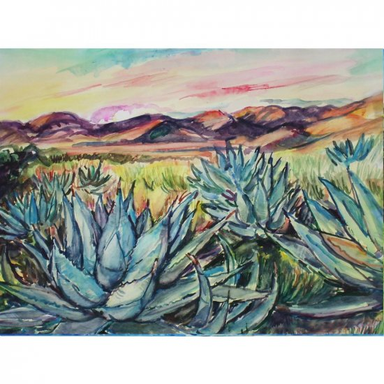 Agave Sunset 11x15 watercolor landscape painting, desert, mountains