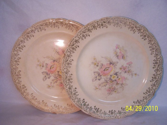 Fine Decorative China Plates - Large